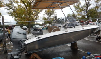 Second Hand Silver Hawk BR 570 with Honda 100hp For Sale full